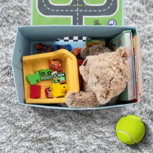 toy organizer ideas